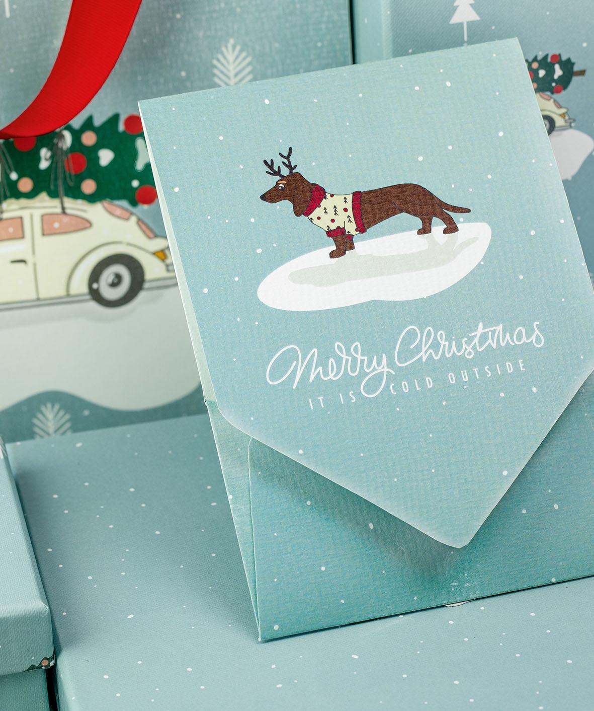 weihnachten-weihnachtskarte-dackel-auto-roessler