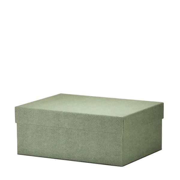 Box L, Salbei/Grün